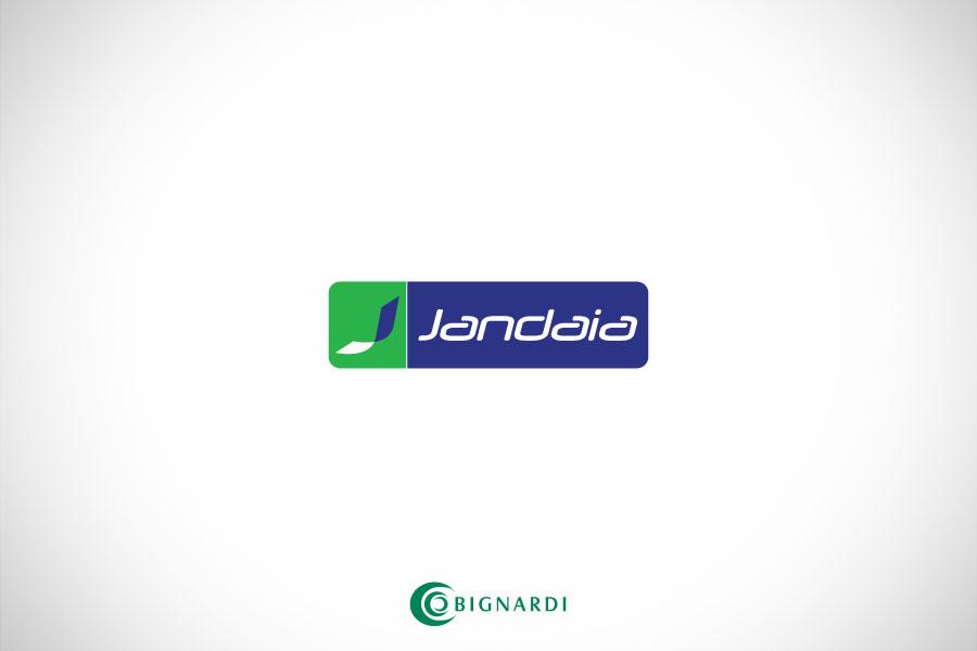 design_embalagens__0003_cadernos-jandaia-bignardi